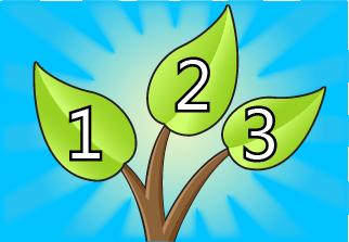 Three Leaves of Transformation