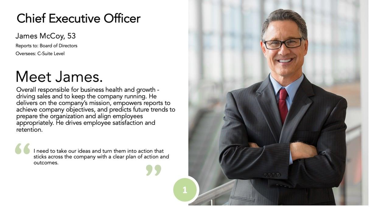 CEO Persona from Market Segmentation