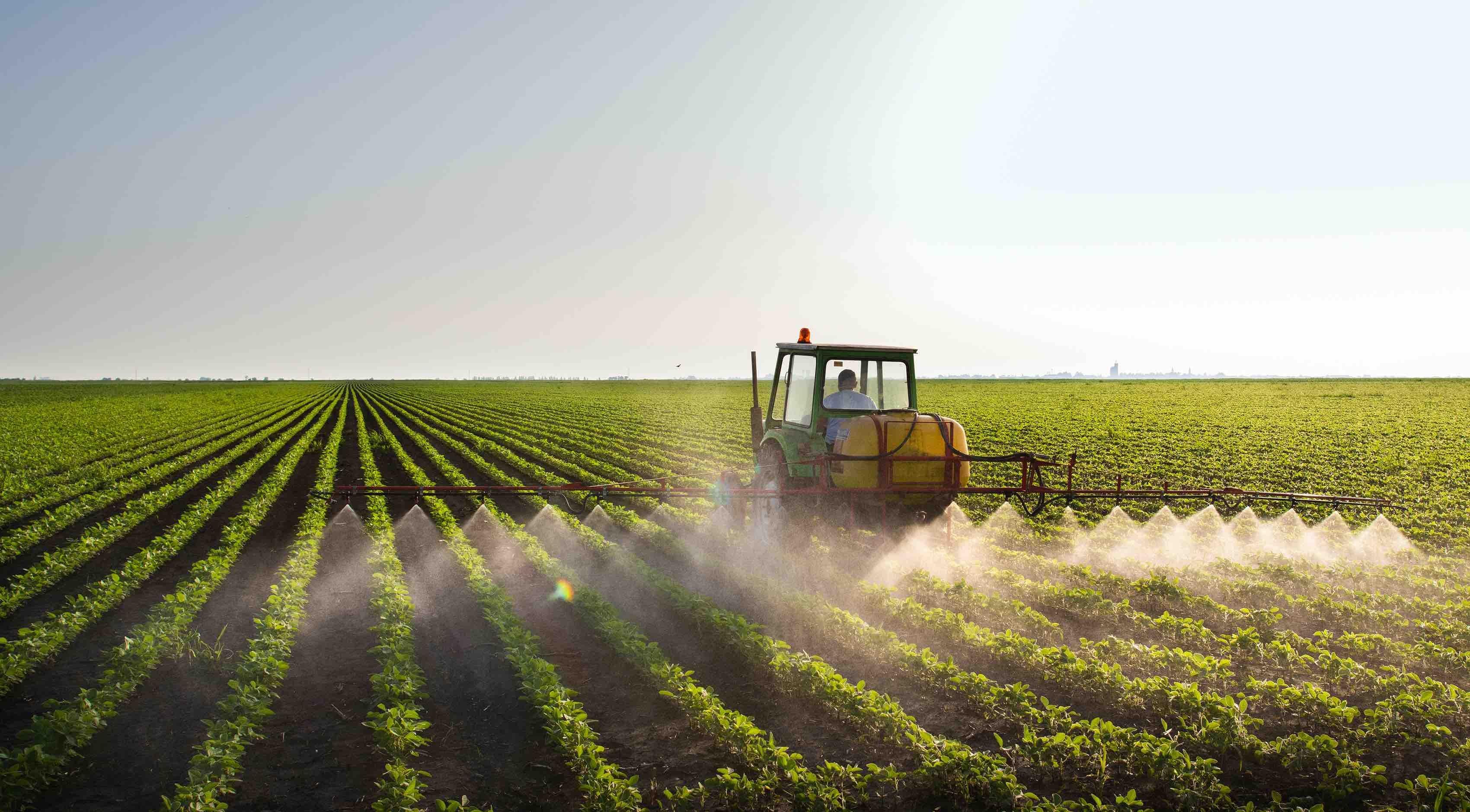 Man Plowing in Field