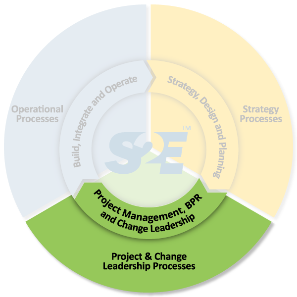 S2E-Project--Change-Leadership-Processes.png