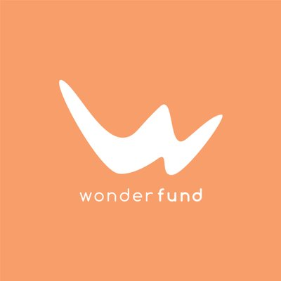 The Wonderfund: A Non-Profit with Everything to Gain